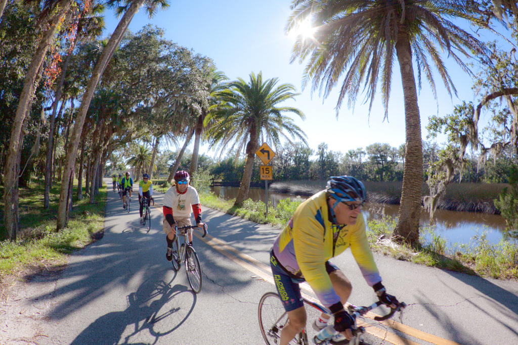 Retire in florida or arizona bad idea real science for Key west bike trails