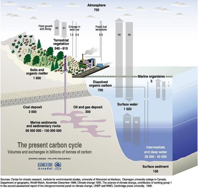 Evil Oceans Produce 16 Times As Much CO2 As Humans