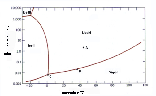 Phase diagram quiz real science assume equilibrium ccuart Gallery